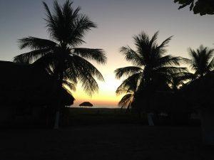 Tilapa Sunset behind trees